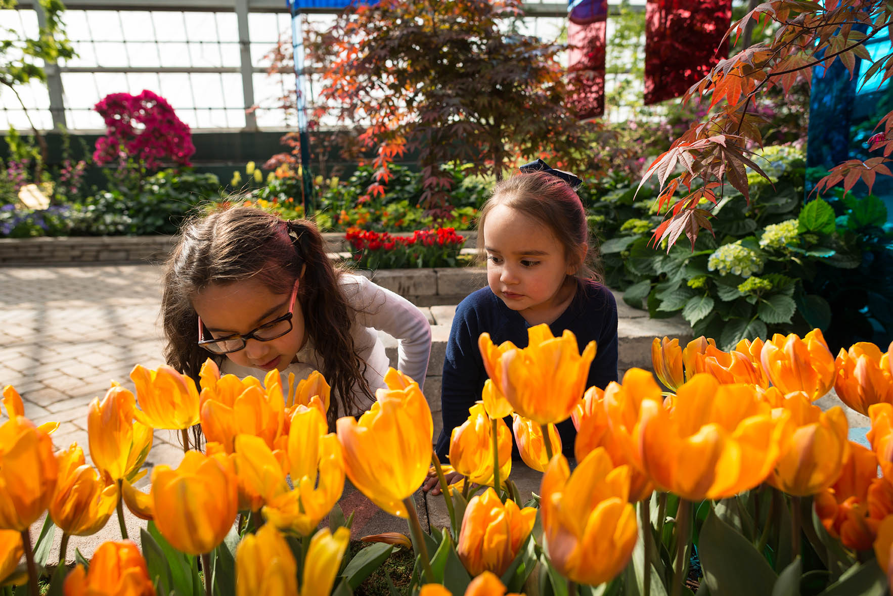 young girls smell flowers in conservatory